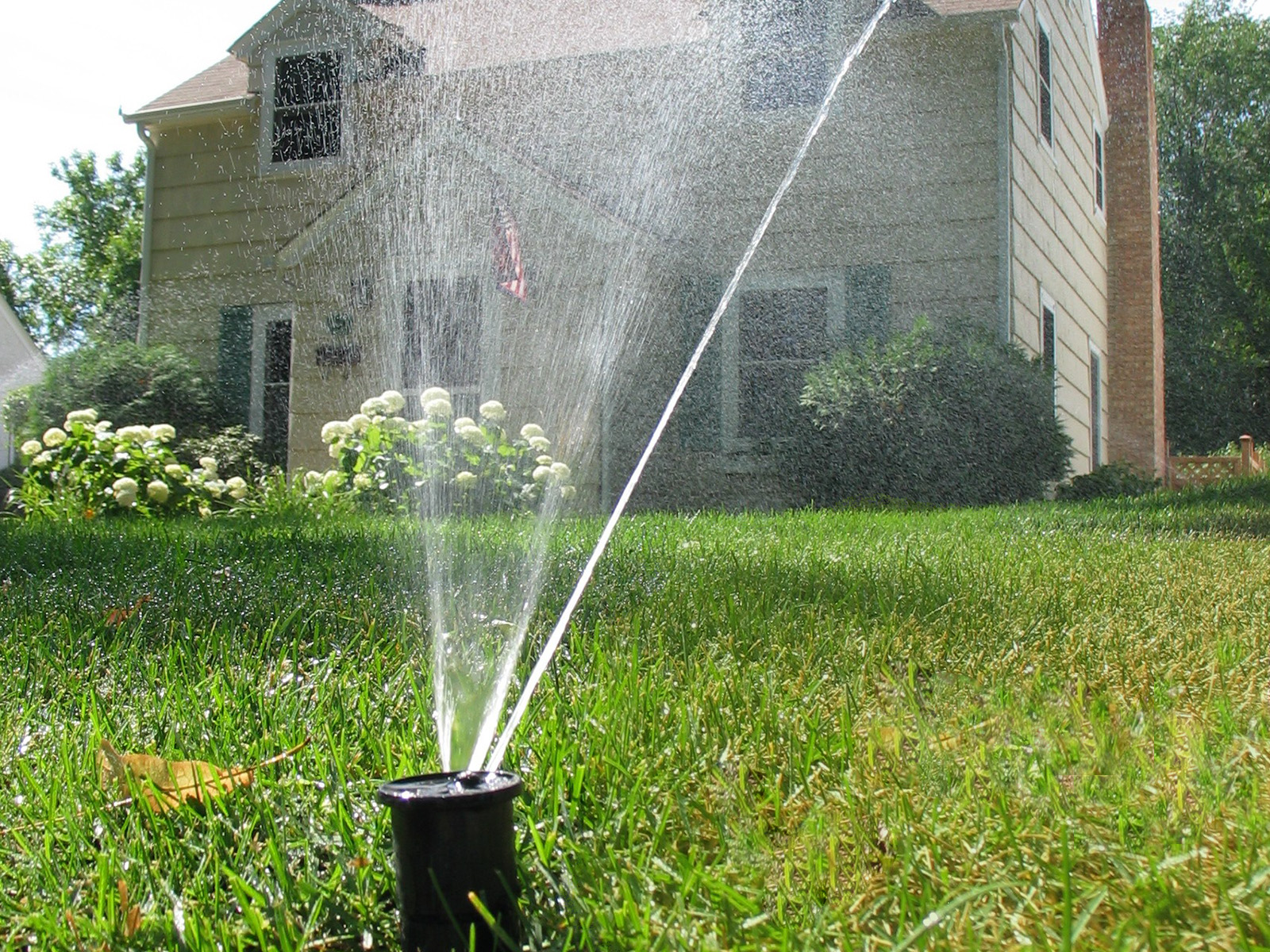 residential irrigation lawn sprinkler Irrigation By Design