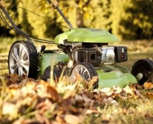 Lawnmower in the fall